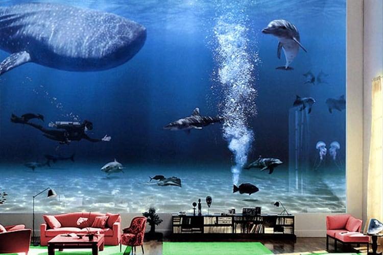 The Digital Aquarium