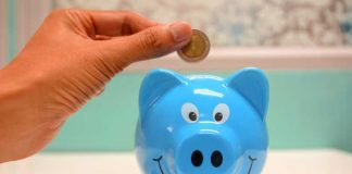 saving money in a blue pig